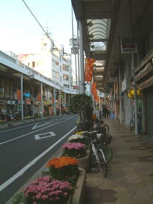 koiwa-f.jpg